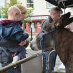 Swinford agricultural show donkey raffle